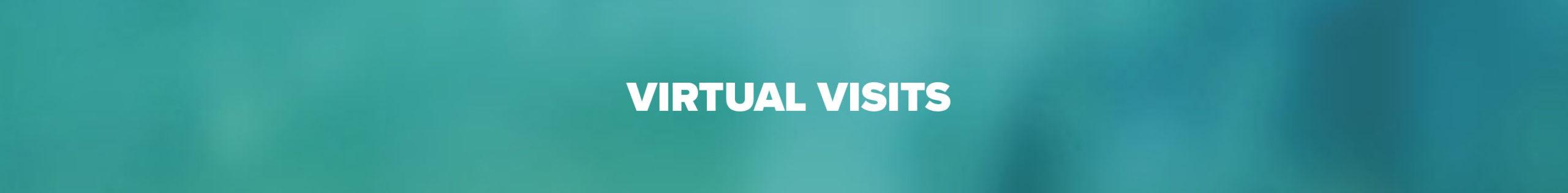 Virtual Visits